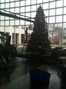 Lewis decorating the big tree
