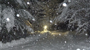 Nighttime snowfall in Brooke Valley