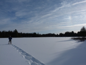 setting off across the beaver pond