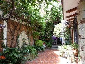 Nora's courtyard