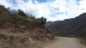 Switchback roads in the Sierra Juárez mountains