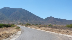 The road to Tlapazola